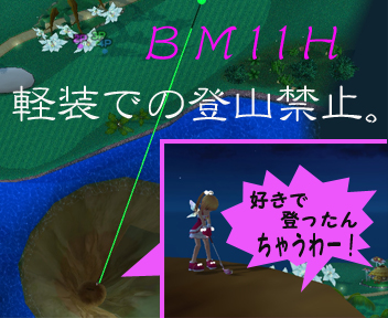 BM11.jpg